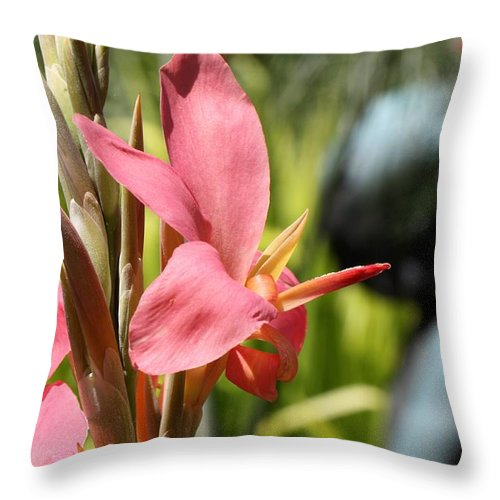 Canna Lily Throw Pillow featuring the photograph Erotic by Katherine White