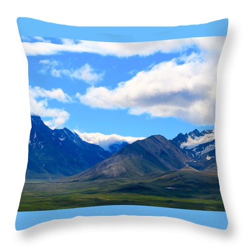 Alaska Throw Pillow featuring the photograph Essential Layers by Michael Anthony