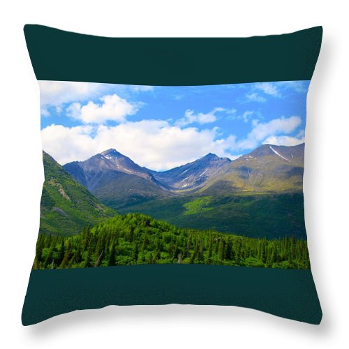 Alaska Throw Pillow featuring the photograph Euphoric Valleys by Michael Anthony