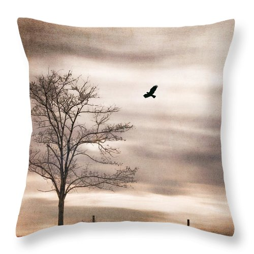 Alone Throw Pillow featuring the photograph Evening Flight by Darren Fisher