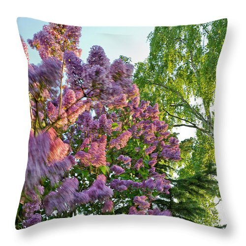 Foliage Throw Pillow featuring the photograph Evening Lilac by Gary Eason