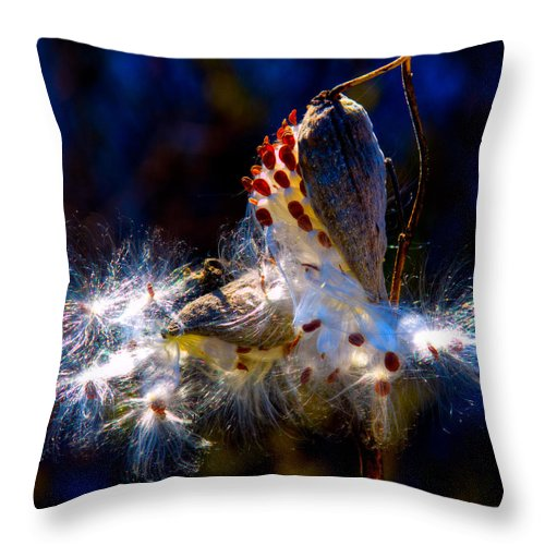 Exploding Pod Throw Pillow featuring the photograph Exploding Pod by David Patterson