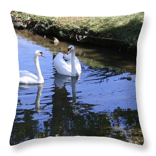 Love Throw Pillow featuring the photograph Eyes Only For Each Other by Nina Fosdick