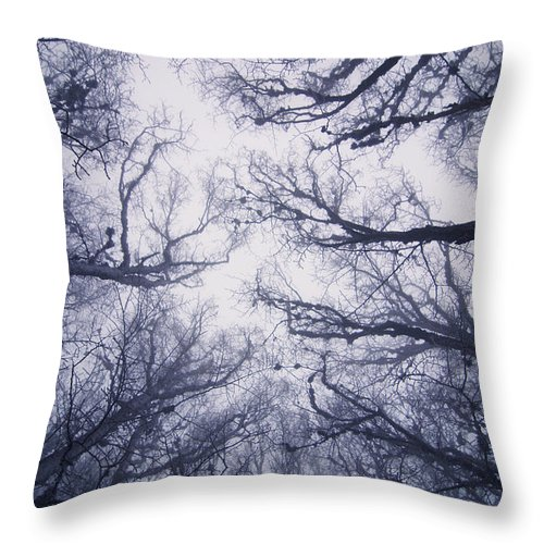 Fairy Tale Throw Pillow featuring the photograph Secret Forest by Zoya S