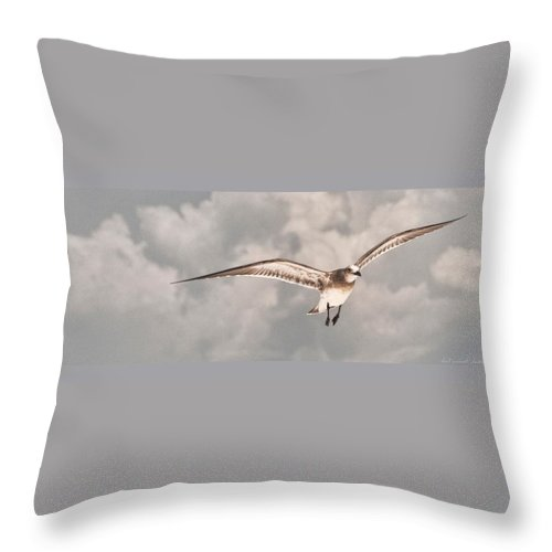 Seagull Throw Pillow featuring the photograph Faith On A Wing by Sheri Bartoszek