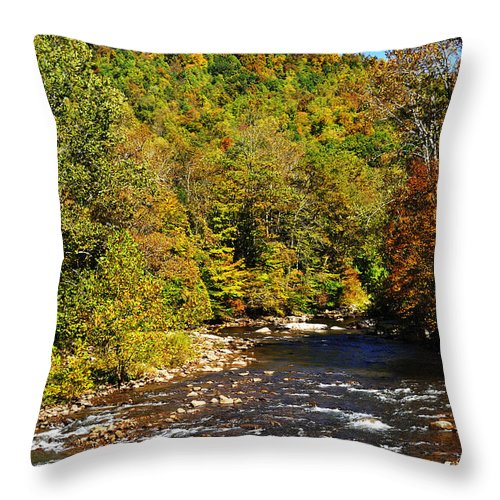 Elk River Throw Pillow featuring the photograph Fall Along Elk River by Thomas R Fletcher