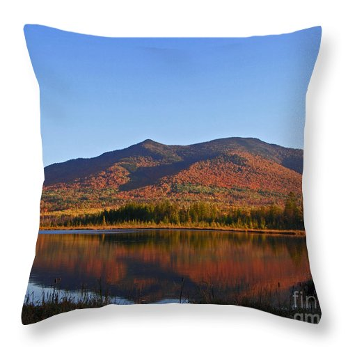 Pondicherry Throw Pillow featuring the photograph Fall At Pondicherry by Lloyd Alexander