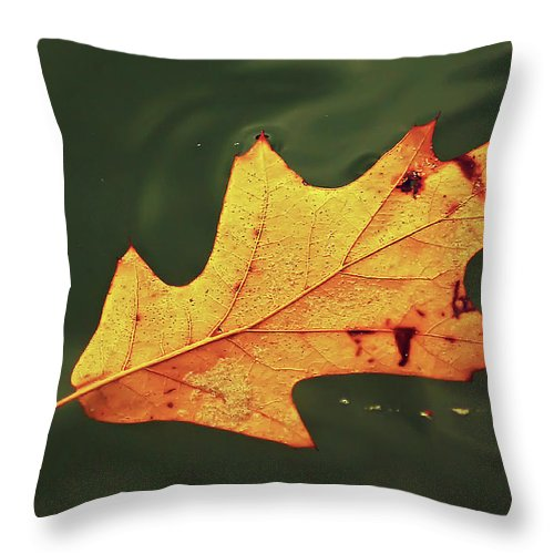 2d Throw Pillow featuring the photograph Fall Away by Brian Wallace
