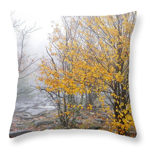 Autumn Throw Pillow featuring the photograph Fall Color And Fog by Thomas R Fletcher
