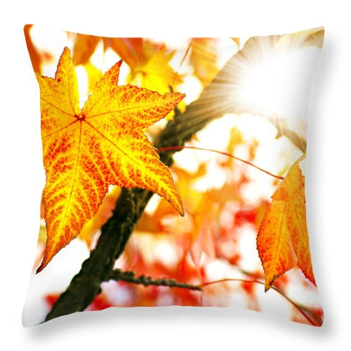 Autumn Throw Pillow featuring the photograph Fall Colors by Carlos Caetano