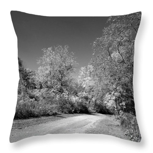 Dodge County Park Throw Pillow featuring the photograph Fall Colors In Black And White by Janice Adomeit