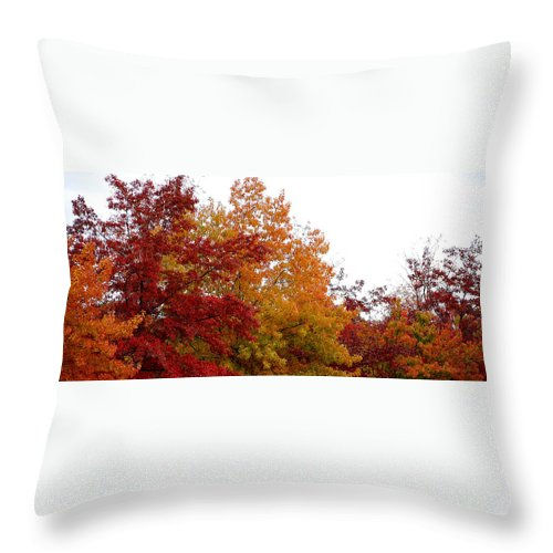 Fall Color Colors Leaf Leaves Tree Orange Red Green Chico Ca Throw Pillow featuring the photograph Fall Filled Sky by Holly Blunkall