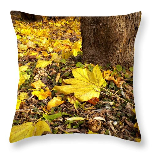Maple Throw Pillow featuring the painting Fall Floor by Renate Nadi Wesley