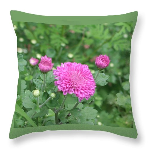 Photo Throw Pillow featuring the photograph Fall Flowers by Barbara S Nickerson
