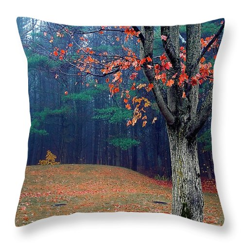 Fall Scenery Throw Pillow featuring the photograph Fall Fog by Burney Lieberman