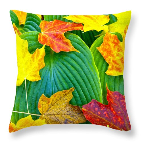 Leaves Throw Pillow featuring the photograph Fall Hosta by David Yunker