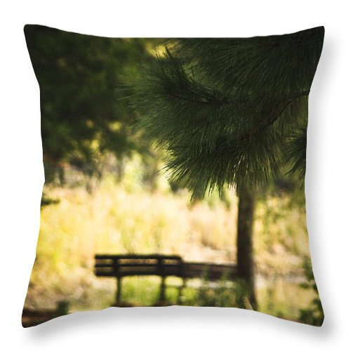Tyler State Park Throw Pillow featuring the photograph Fall In The Pines by Kim Henderson