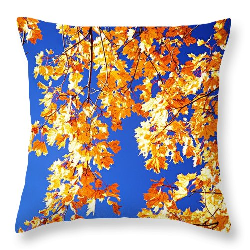 Photography Throw Pillow featuring the photograph Fall Is In The Air by Larry Ricker
