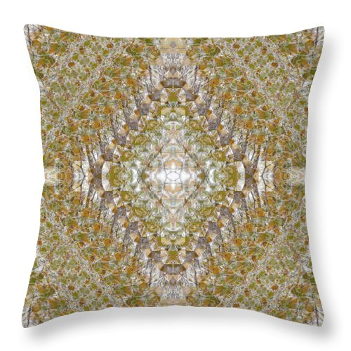 Tree Throw Pillow featuring the photograph Fall Kaleidoscope Three by Ulrich Kunst And Bettina Scheidulin