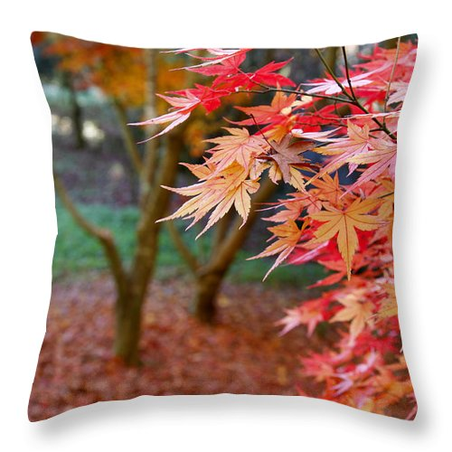 Autumn Throw Pillow featuring the photograph Fall by Les Cunliffe