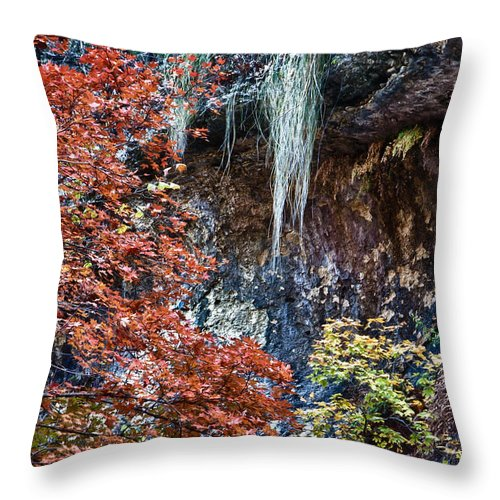 Landscape Throw Pillow featuring the photograph Fall Scene At Lost Maples by James Woody