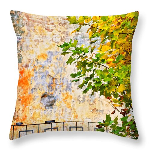 Tree Throw Pillow featuring the photograph Fall by Silvia Ganora
