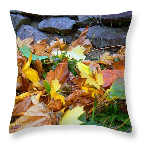 Autumn Throw Pillow featuring the photograph Fallen Leaves by Pamela Patch