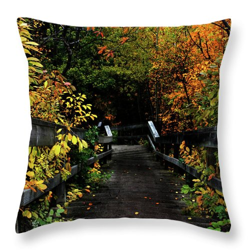 Abstract Throw Pillow featuring the photograph Falling Step by The Artist Project