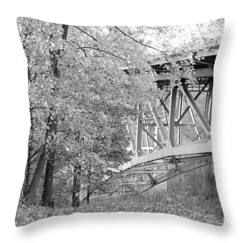 Fall Throw Pillow featuring the photograph Falling Under The Bridge by Trish Hale