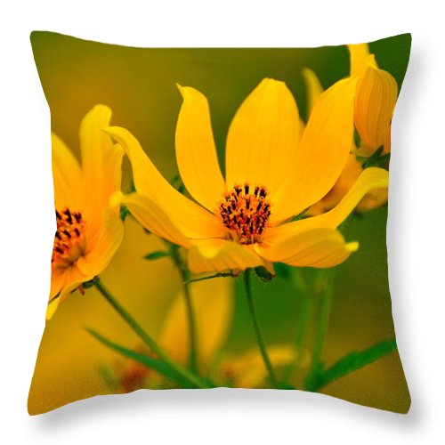 Flowers Throw Pillow featuring the photograph Falls Glory by Marty Koch