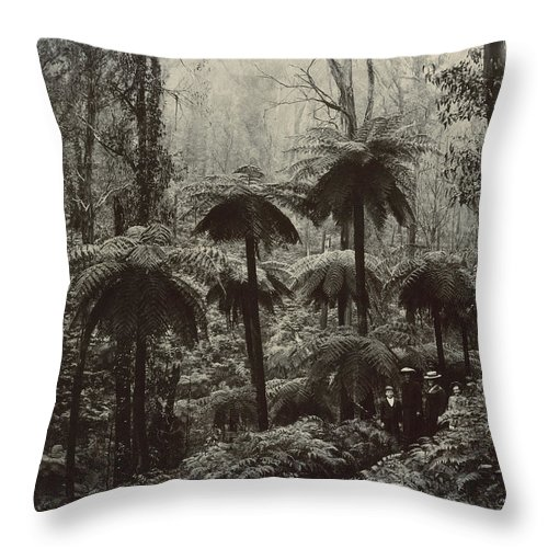 Photography Throw Pillow featuring the photograph Family Walking Through A Forest Of Tree by Nicholas John Caire