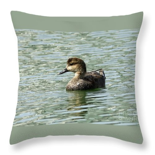 Fancy Duck At The Lake Throw Pillow featuring the photograph Fancy Duck At The Lake by Inspired Nature Photography Fine Art Photography