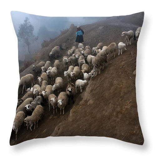 Farming Throw Pillow featuring the photograph farmers bring their sheep to graze. Republic of Bolivia. by Eric Bauer