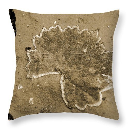Leaf Throw Pillow featuring the photograph Faux Fossil by Christine Stonebridge