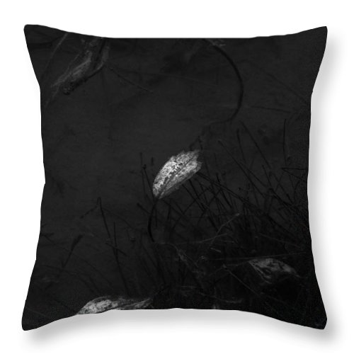 Ron Jones Throw Pillow featuring the photograph February Moods by Ron Jones