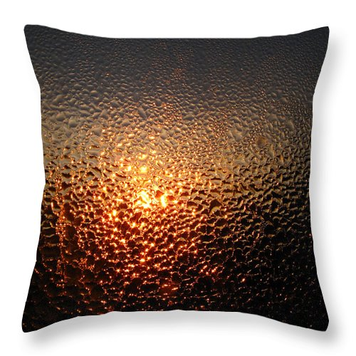 Dew Throw Pillow featuring the photograph February Morning Dew Drops by Joyce Dickens