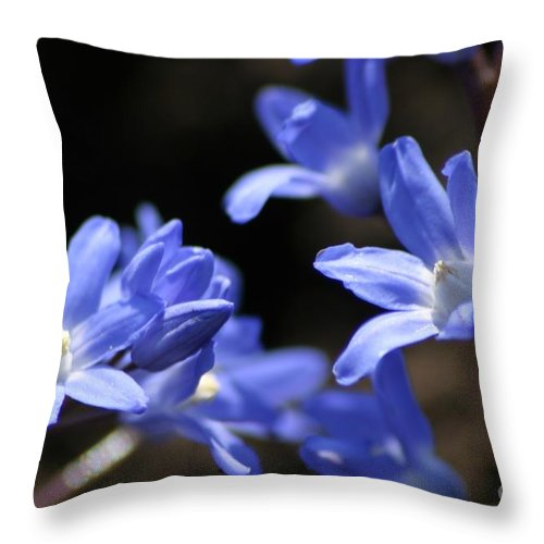 Floral Throw Pillow featuring the photograph Feeling Blue by Living Color Photography Lorraine Lynch