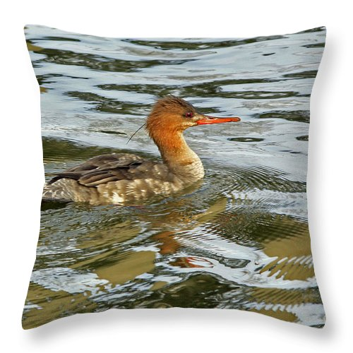 Red Throw Pillow featuring the photograph Female Red Breasted Merganser In The Spring by Inspired Nature Photography Fine Art Photography