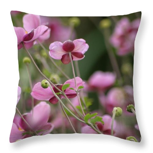 Floral Throw Pillow featuring the photograph Field Of Japanese Anemones by Living Color Photography Lorraine Lynch