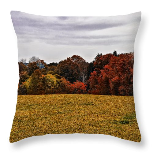 Fields Of Gold Throw Pillow featuring the photograph Fields Of Gold by Bill Cannon