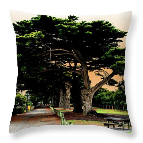 Fig Trees Throw Pillow featuring the photograph Fig Tree Lane by Douglas Barnard