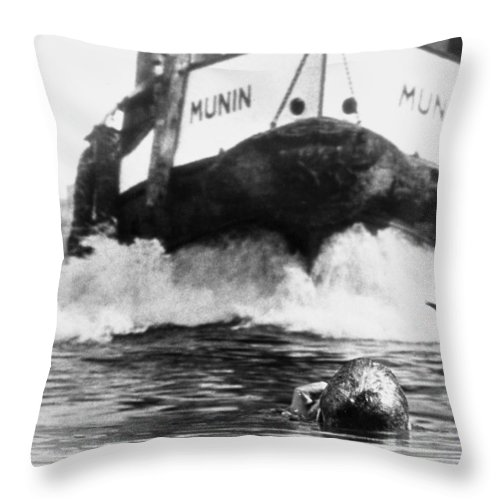 1963 Throw Pillow featuring the photograph Film: The Prize, 1963 by Granger