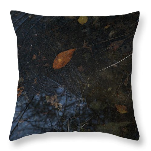 Autumn Throw Pillow featuring the photograph First Ice by Ulrich Kunst And Bettina Scheidulin