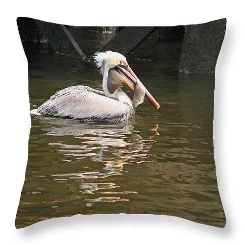 Pelican Throw Pillow featuring the photograph Fish Is Good For You by Suzanne Gaff