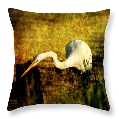 Great Egret Along The Bayou Fishing For His Meal. Old Fort Bayou Throw Pillow featuring the photograph Fishing by Joan McCool