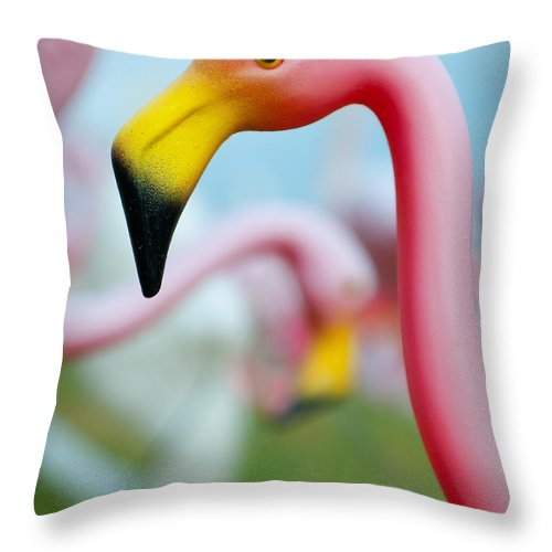 Austin Throw Pillow featuring the photograph Flamingo 1 by Sean Wray