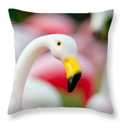 Austin Throw Pillow featuring the photograph Flamingo 3 by Sean Wray