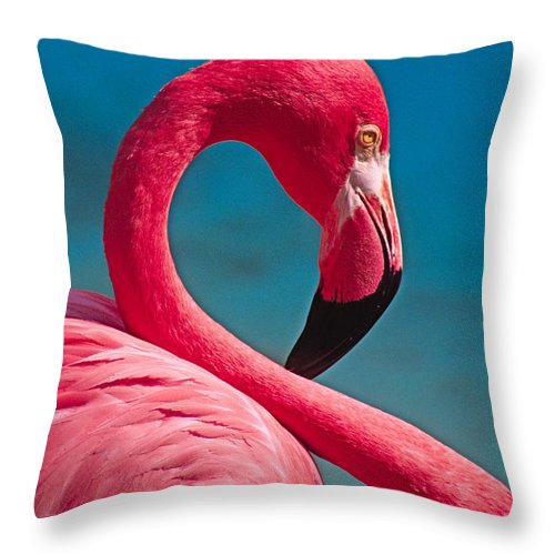 Flamingo Throw Pillow featuring the photograph Flexible Flamingo by Michele Burgess