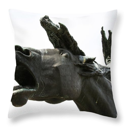 Horse Throw Pillow featuring the photograph Flight Of The Valkyrie by Heather Lennox