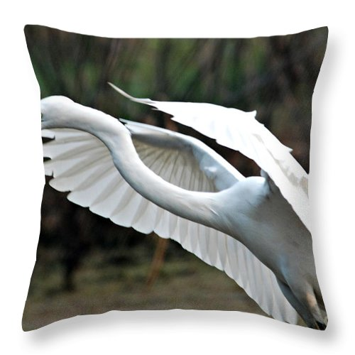 Flight Throw Pillow featuring the photograph Flight by Pravine Chester